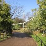 itozu_150116 080 (3)