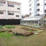 itozu_150116 356 (3)