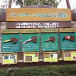 itozu_150117 081 (3)