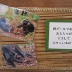 itozu_150117 211 (3)