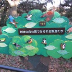 itozu_150118 010 (3)