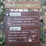 itozu_150118 016 (3)