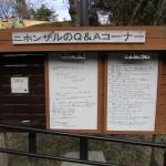 itozu_150118 937 (3)