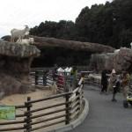 itozu_150118 951r (2)