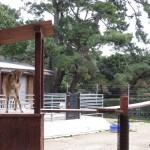 uminaka_dobutsu_150228 1044
