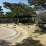 uminaka_dobutsu_150228 354