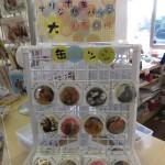 uminaka_dobutsu_150228 455