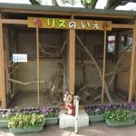 tennoji_150610 2012
