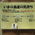 kobedobutsu_150629 483
