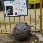 ikeda_150812 672