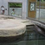 ishikawa_150829 (216)r