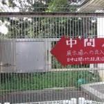 hamamatsu_140906 796 (2)
