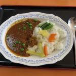 hamamatsushi_151105_06 058