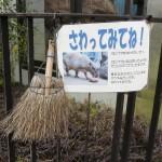 fukuyamashi_160304 864