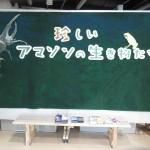 tokiwa_160711 874